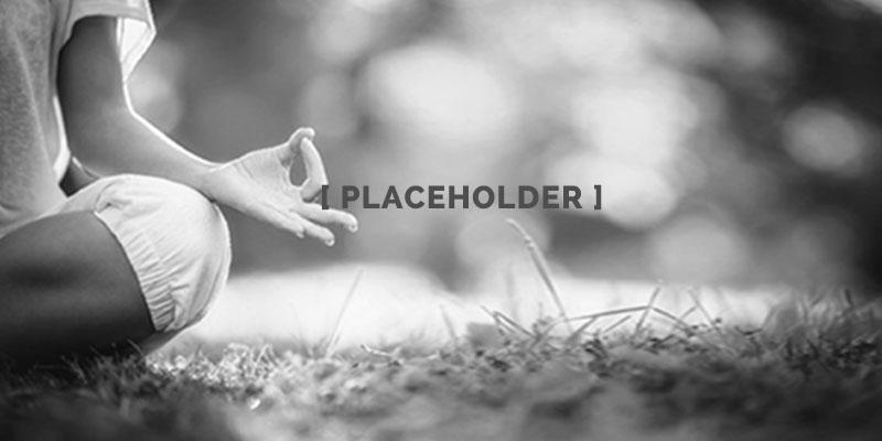 Wildheart Placeholder Alt Text